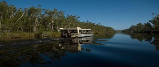 BBQ Cruise on the Noosa Everglades